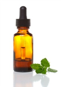 nutrition - herbs